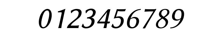 Linux Biolinum O Italic Font OTHER CHARS