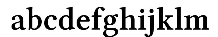 Linux Libertine Bold Font LOWERCASE