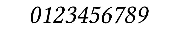 Linux Libertine Capitals Italic Font OTHER CHARS