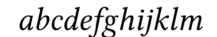 Linux Libertine Italic Font LOWERCASE