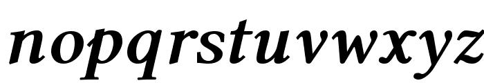 Linux Libertine O Bold Italic Font LOWERCASE