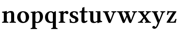 Linux Libertine O Bold Font LOWERCASE