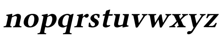 Linux Libertine Slanted Bold Font LOWERCASE