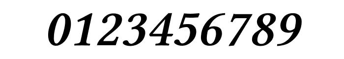 Linux Libertine Slanted Semibold Font OTHER CHARS