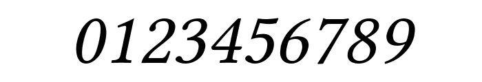Linux Libertine Slanted Font OTHER CHARS