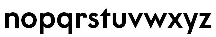 LitSans Medium Font LOWERCASE