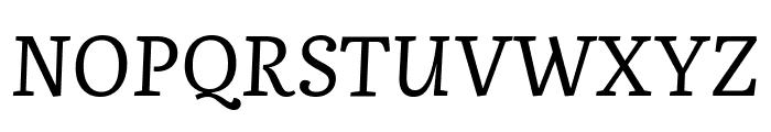 Literata Italic Font UPPERCASE