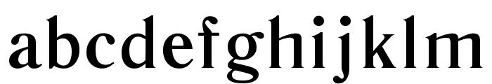 Literaturnaya Book Font LOWERCASE