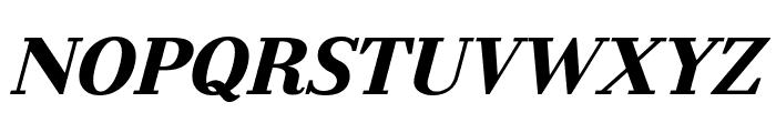 Litoland Italic Font UPPERCASE