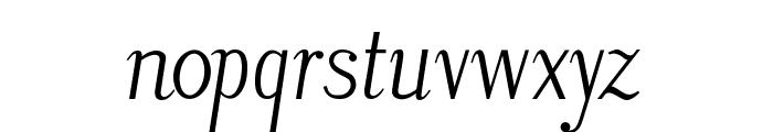 LitosScript-Italic Font LOWERCASE