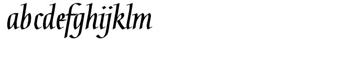 Linotype Gaius Bold Straight Font LOWERCASE