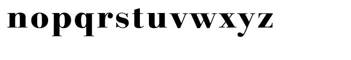 Linotype Gianotten Heavy Font LOWERCASE