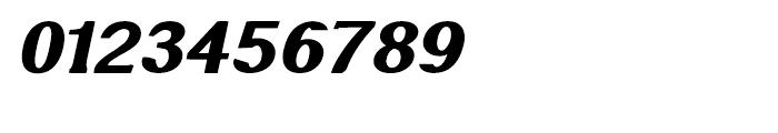 Littler Serifada Italic Font OTHER CHARS
