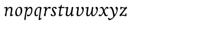 Livory Regular Italic Font LOWERCASE