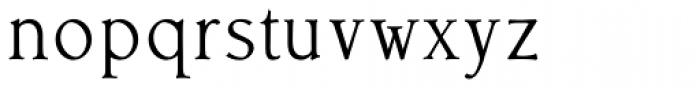 Librum E Book Font LOWERCASE