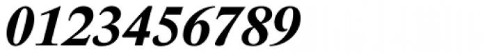 Lido STF Bold Italic Font OTHER CHARS