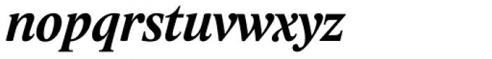 Lido STF Bold Italic Font LOWERCASE