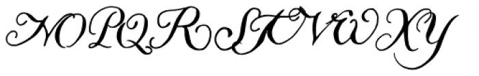 Liesel Icons Regular Font UPPERCASE