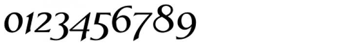 Linotype Aperto SemiBold Italic Font OTHER CHARS