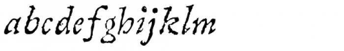Linotype Compendio Std Italic Font LOWERCASE