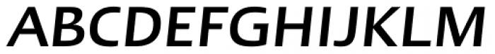 Linotype Ergo Medium Italic Font UPPERCASE