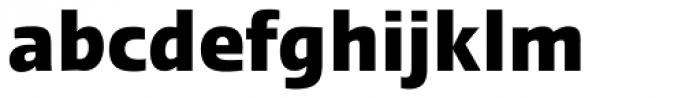 Linotype Ergo Pro Bold Condensed Font LOWERCASE