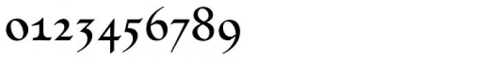 Linotype Humanistika Std Regular Font OTHER CHARS