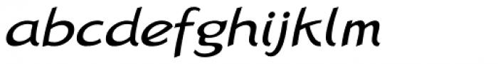 Linotype Rana Std Italic Font LOWERCASE