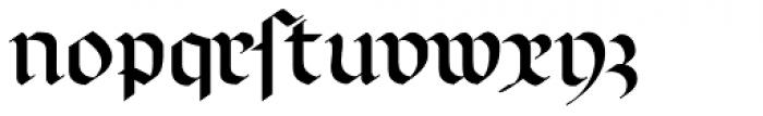 Linotype Richmond Fraktur Regular DFR Font LOWERCASE