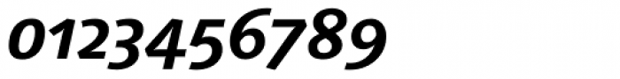 Linotype Syntax Bold Italic OsF Font OTHER CHARS
