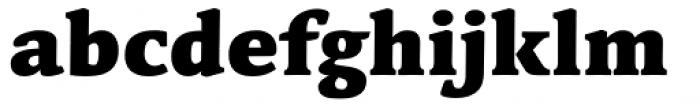 Linotype Syntax Serif Black Font LOWERCASE