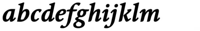 Linotype Syntax Serif Bold Italic Font LOWERCASE