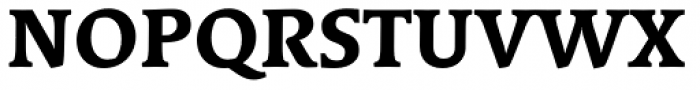 Linotype Syntax Serif Com Heavy Font UPPERCASE
