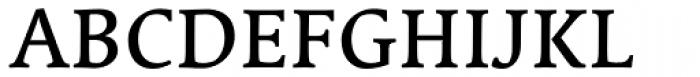 Linotype Syntax Serif Com Medium Font UPPERCASE