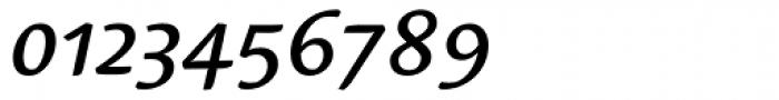 Linotype Syntax Serif OsF Medium Italic Font OTHER CHARS