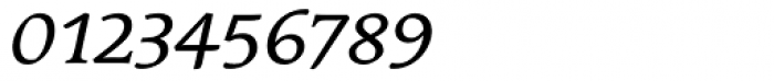 Linotype Syntax Serif SC Italic Font OTHER CHARS