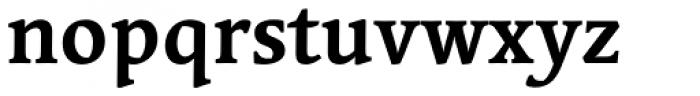 Linotype Syntax Serif Std Bold Font LOWERCASE