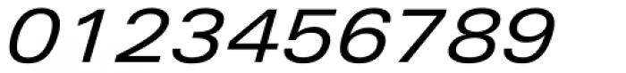 Linotype Univers 441 Extended Italic Font OTHER CHARS