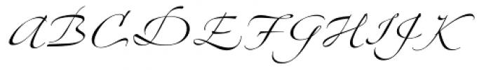 Linotype Zapfino Four Font UPPERCASE