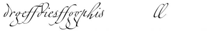 Linotype Zapfino Ligature Font LOWERCASE