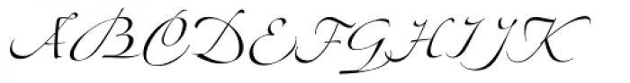 Linotype Zapfino Three Font UPPERCASE