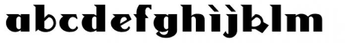 LinotypeDharma Font LOWERCASE