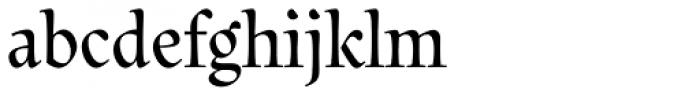 Litania Font LOWERCASE