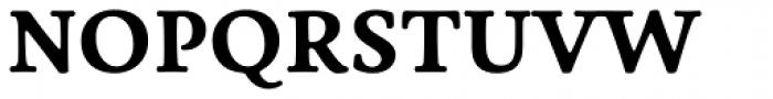 Livory Bold Font UPPERCASE