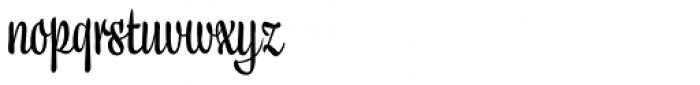 Liza Text Pro Font LOWERCASE