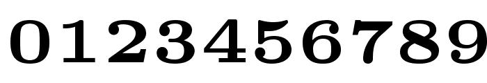 LMRoman5-Bold Font OTHER CHARS
