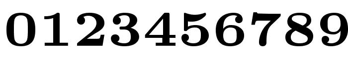 LMRoman6-Bold Font OTHER CHARS