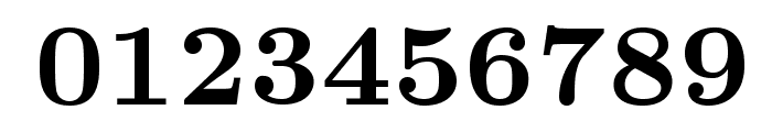 LMRoman8-Bold Font OTHER CHARS