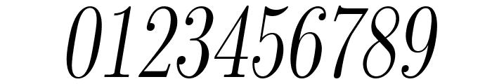 LMRomanDunh10-Oblique Font OTHER CHARS