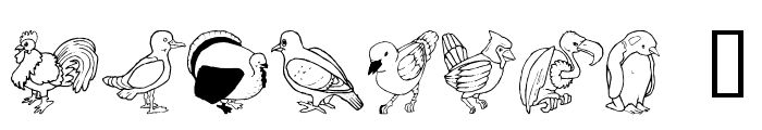 LMS Bird Watching Font OTHER CHARS